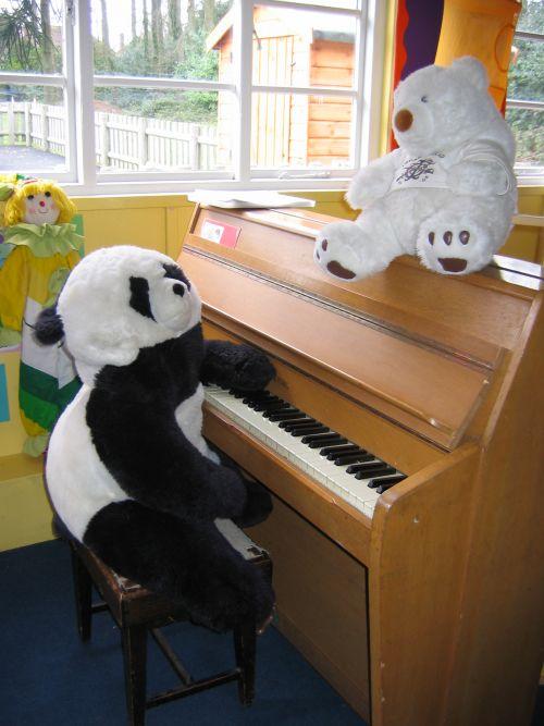 pandas picture